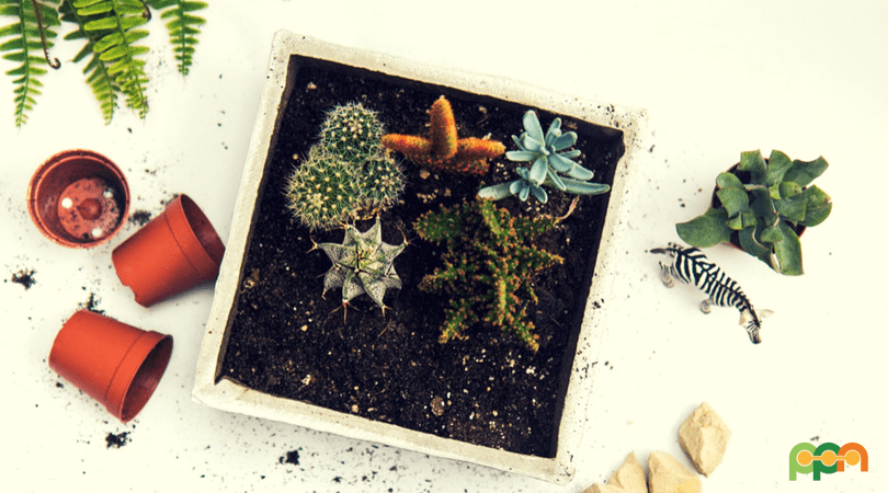 Learn How To Turn Trash Into Garden Treasures